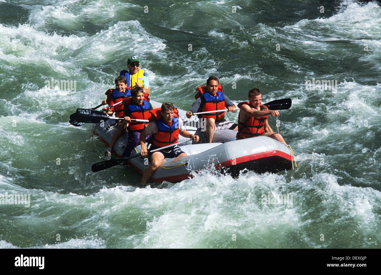 Elk266-1264 Wyoming, Jackson Hole, Snake River, whitewater rafting - Stock Image