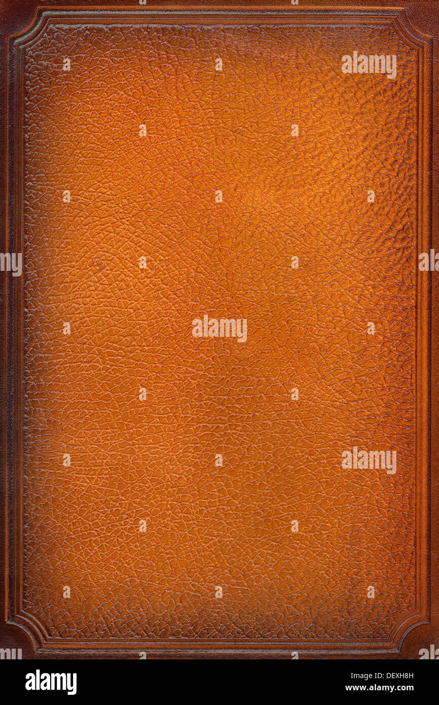 brown leathercraft tooled vintage book cover with texture and border - Stock Image