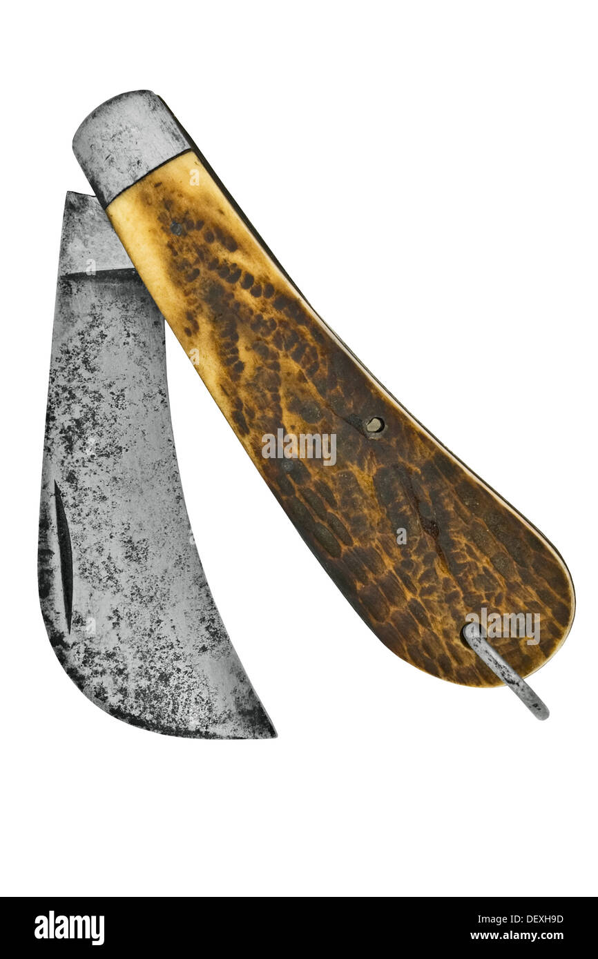 vintage pruning or hook knife isolated over white background, clipping path Stock Photo
