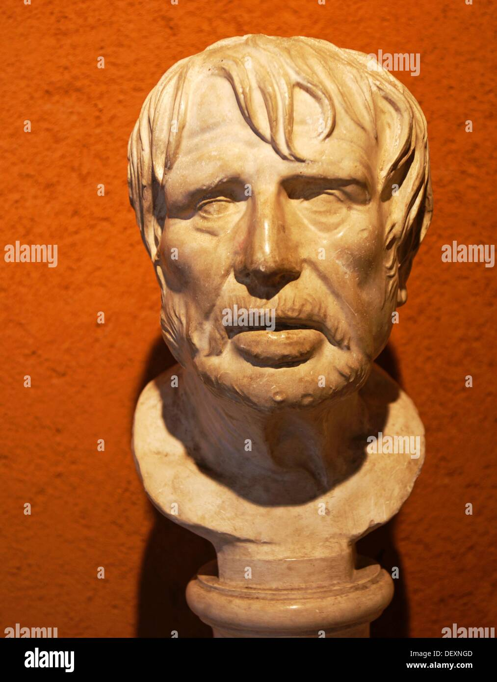 Roman bust said of Seneca preserved in museum, Auch, Gers, Midi-Pyrenees, France - Stock Image