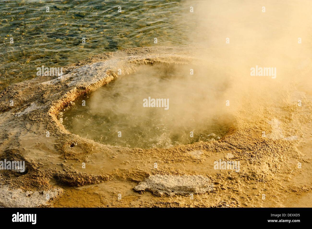 Lakeshore Geyser, West Thumb Geyser Basin, Yellowstone National Park, Wyoming, USA - Stock Image