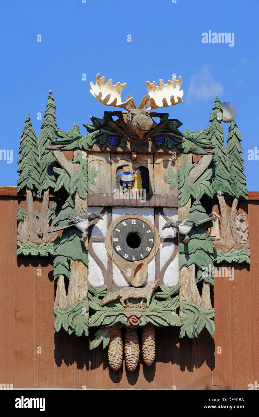Cuckoo clock in Jackson, Wyoming, USA, PublicGround - Stock Image
