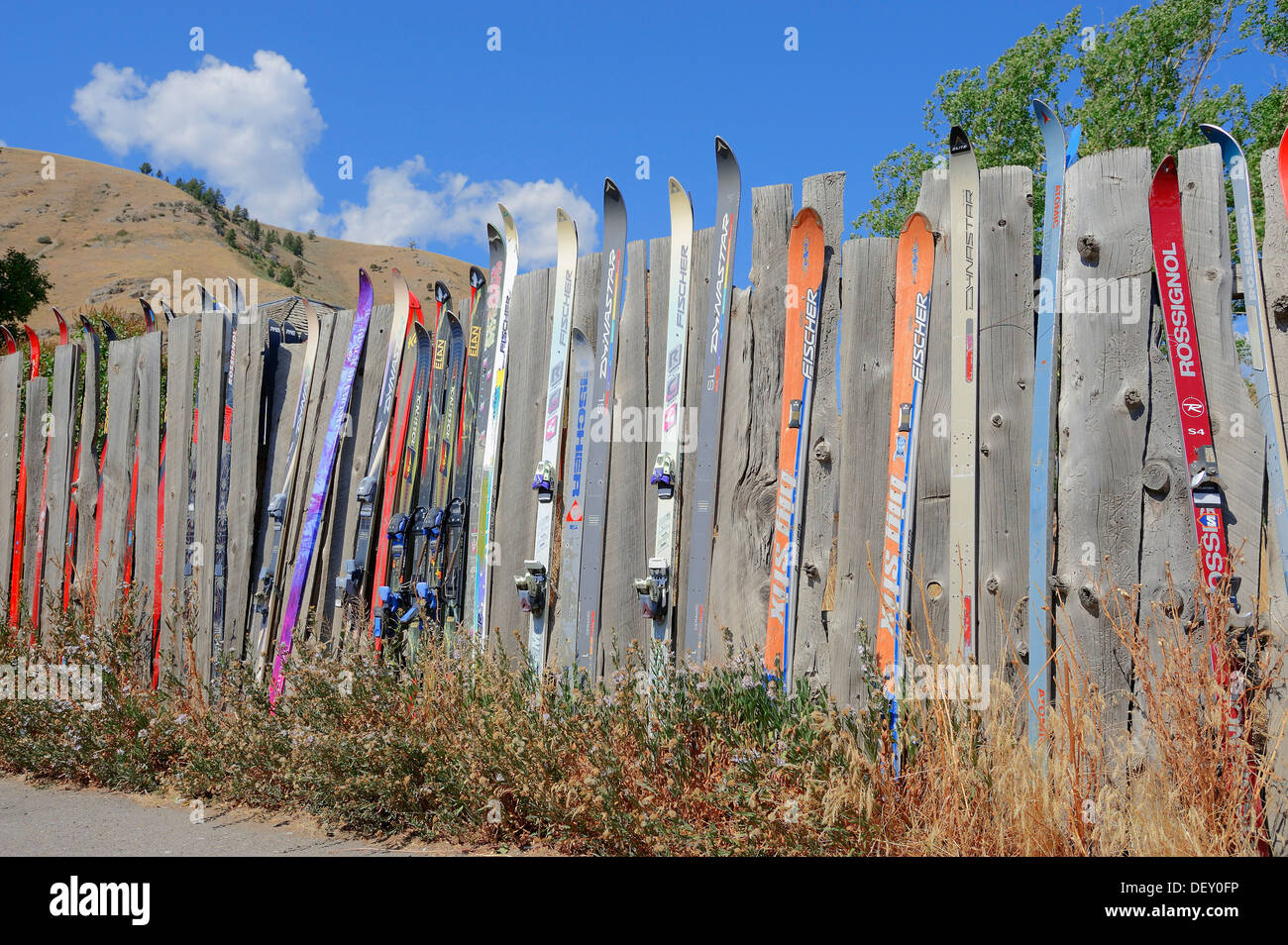 Picket fence with skis, Jackson, Wyoming, USA, PublicGround - Stock Image