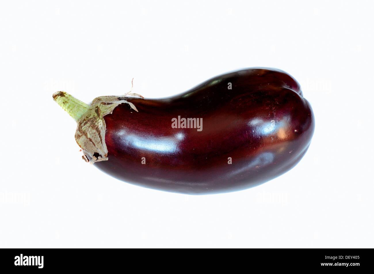 Aubergine or Eggplant (Solanum melongena) Stock Photo