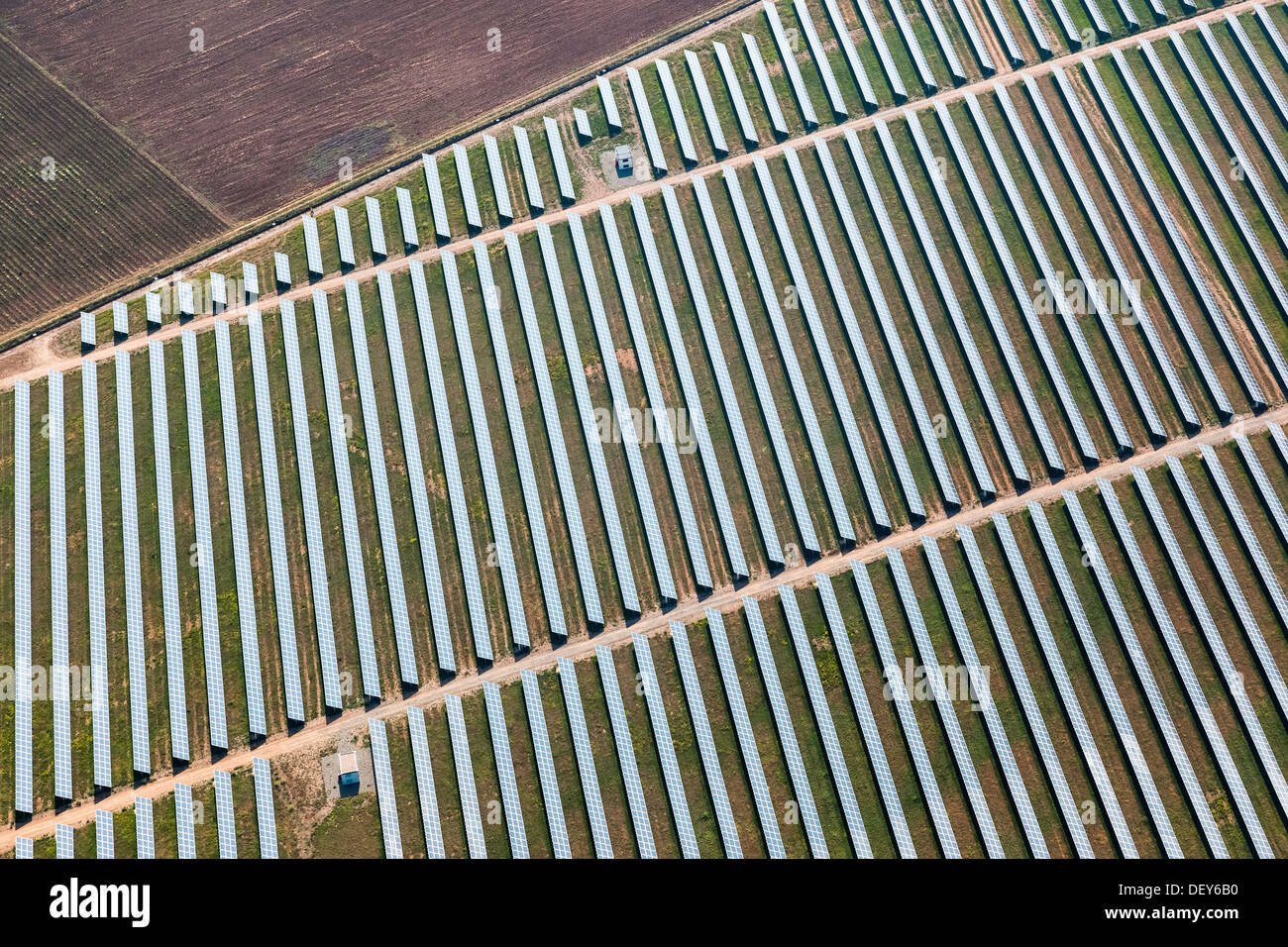 Field of solar panels from above - Stock Image