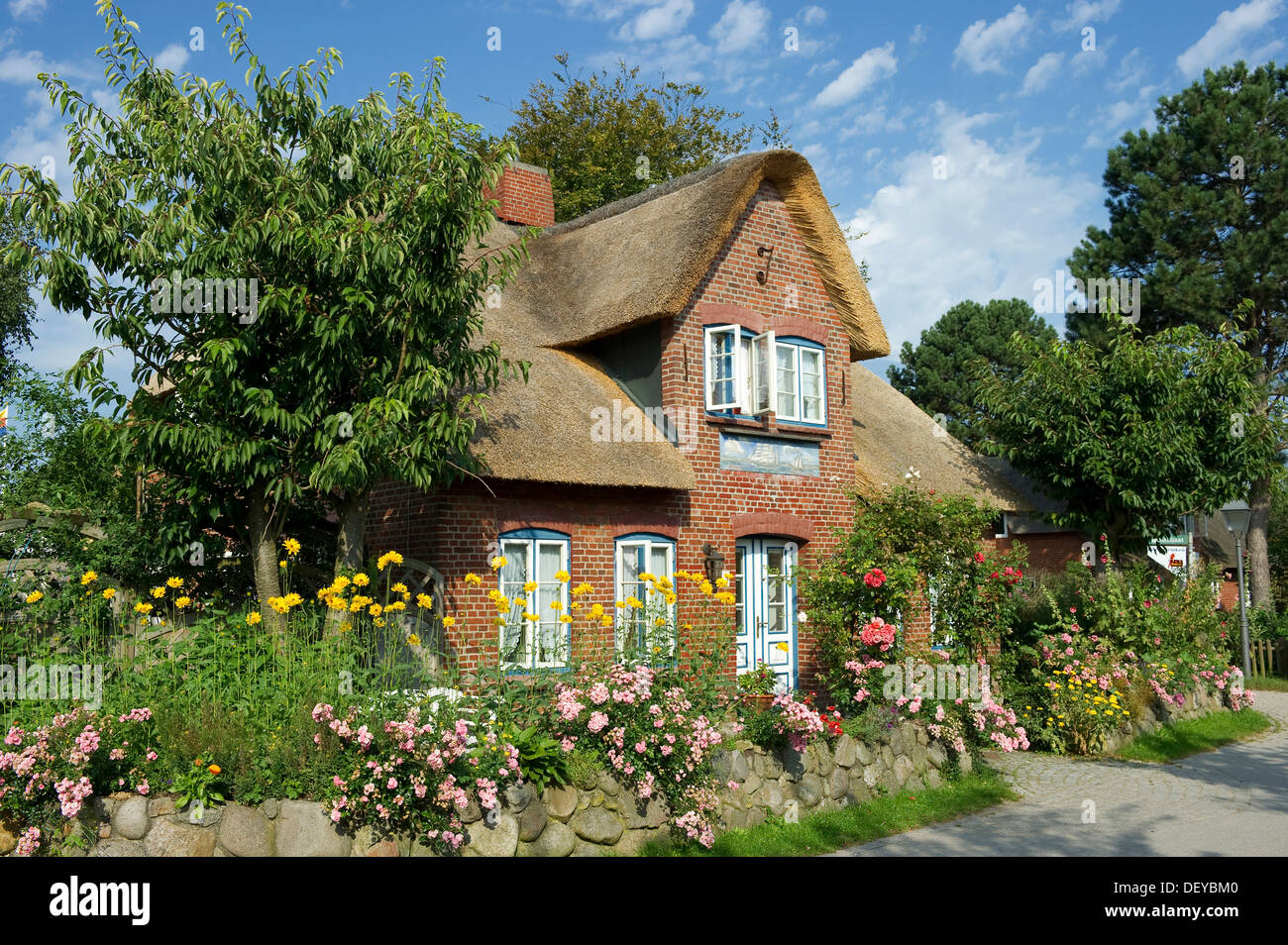 Thatched cottage and cottage garden, Nebel, Amrum, North Frisian Islands, Schleswig-Holstein - Stock Image