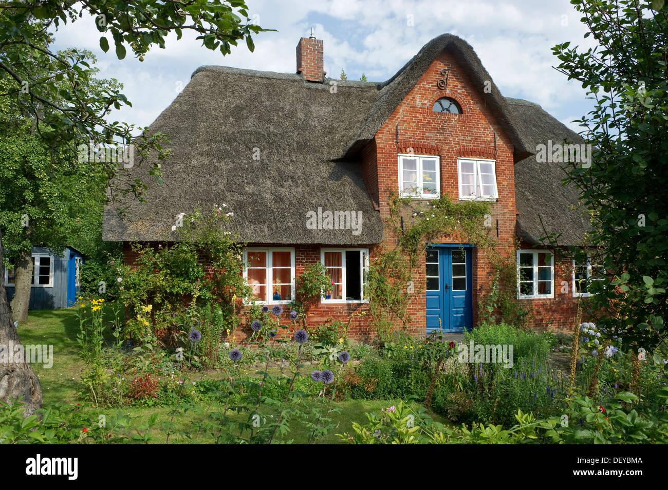 Thatched cottage and cottage garden, Nebel, Amrum, North Frisian Islands, Schleswig-Holstein - Stock Image