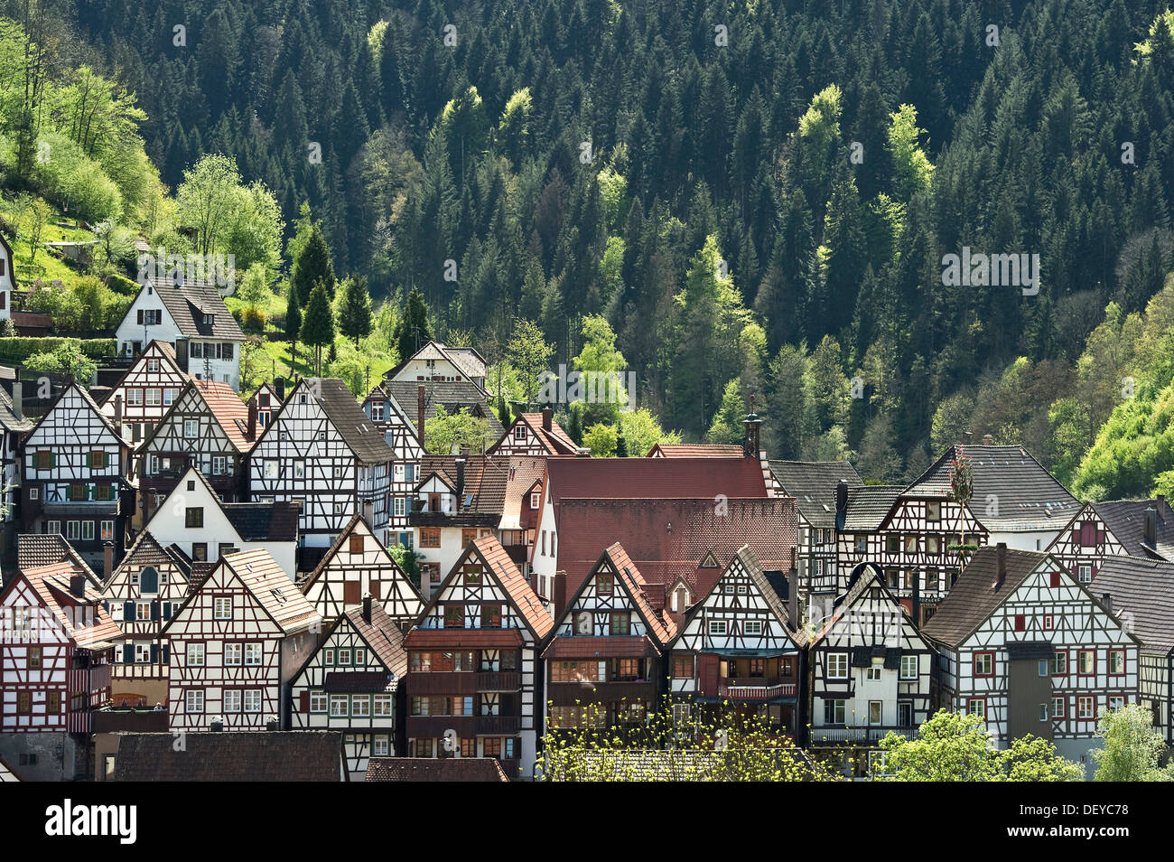 half timbered houses schiltach black forest baden wuerttemberg stock photo 60838604 alamy. Black Bedroom Furniture Sets. Home Design Ideas