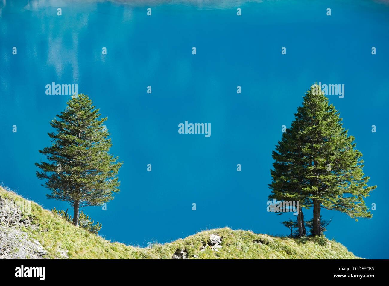 Oeschinensee, Oeschinen Lake, Bernese Oberland, Canton of Bern, Switzerland, Europe - Stock Image