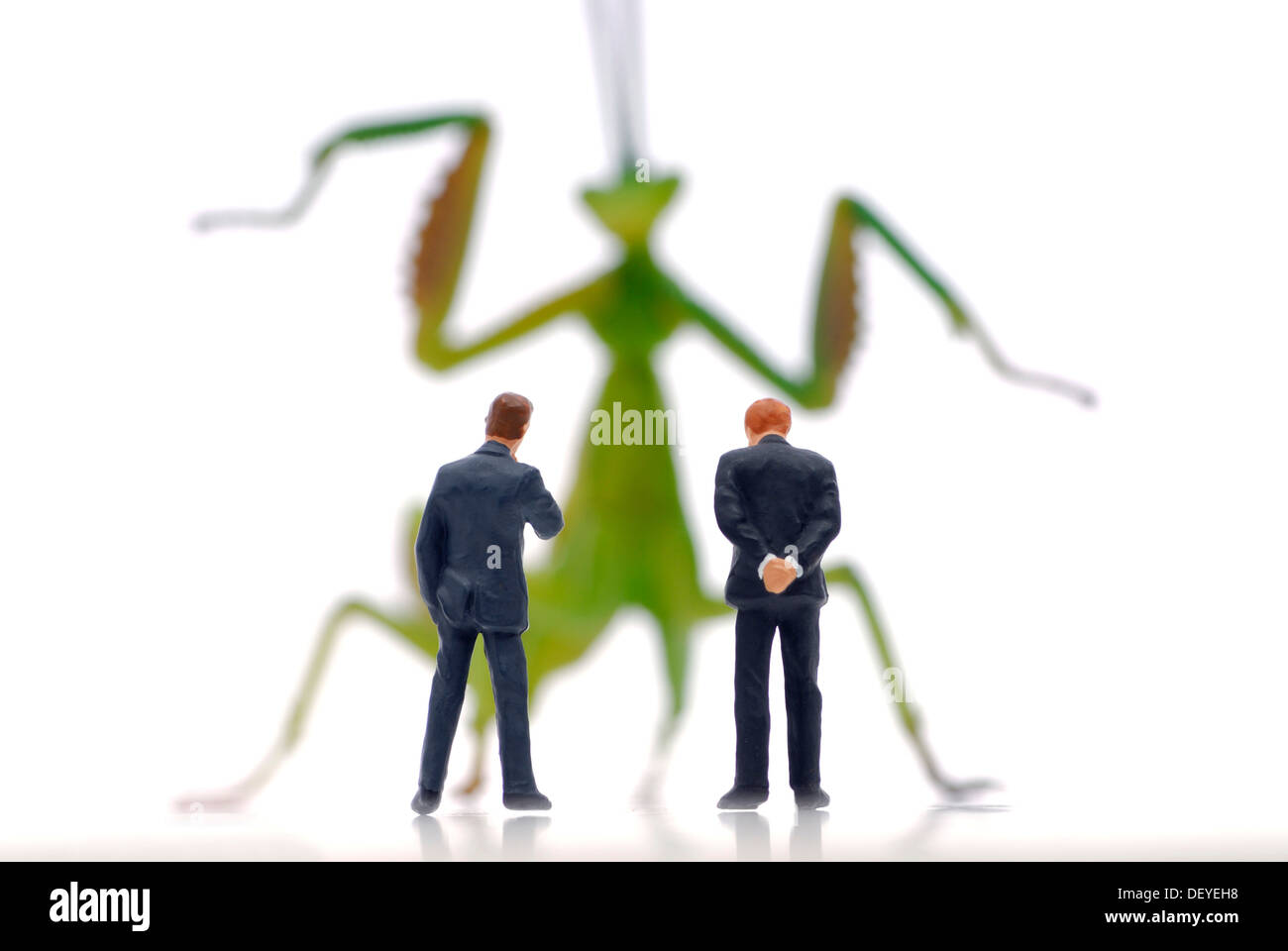 Miniature businessmen figures in front of a locust, symbolic image for hedge funds Stock Photo
