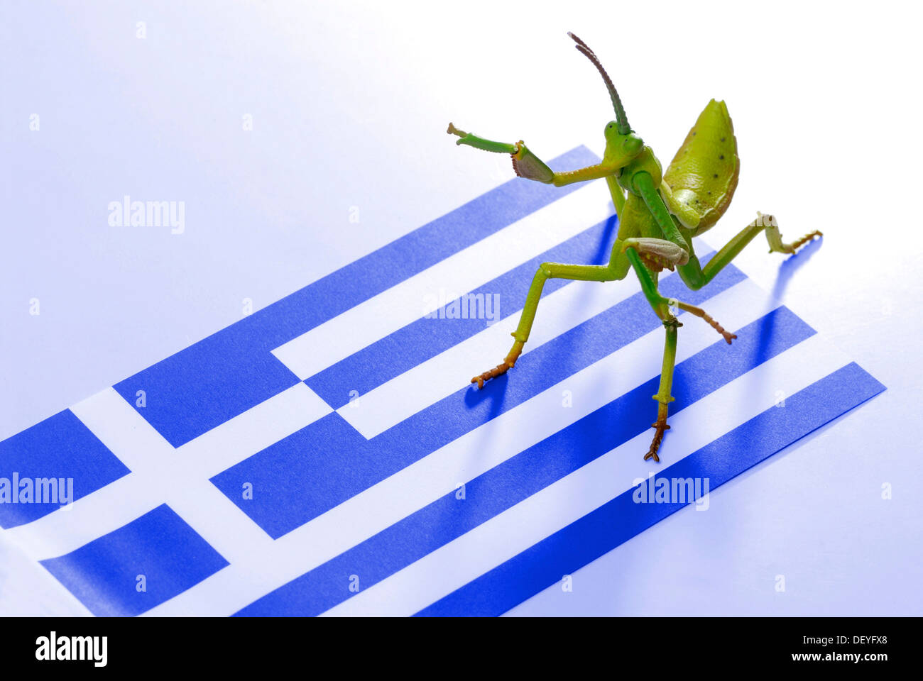 Grasshopper as a symbolic image for hedge funds on a flag of Greece - Stock Image