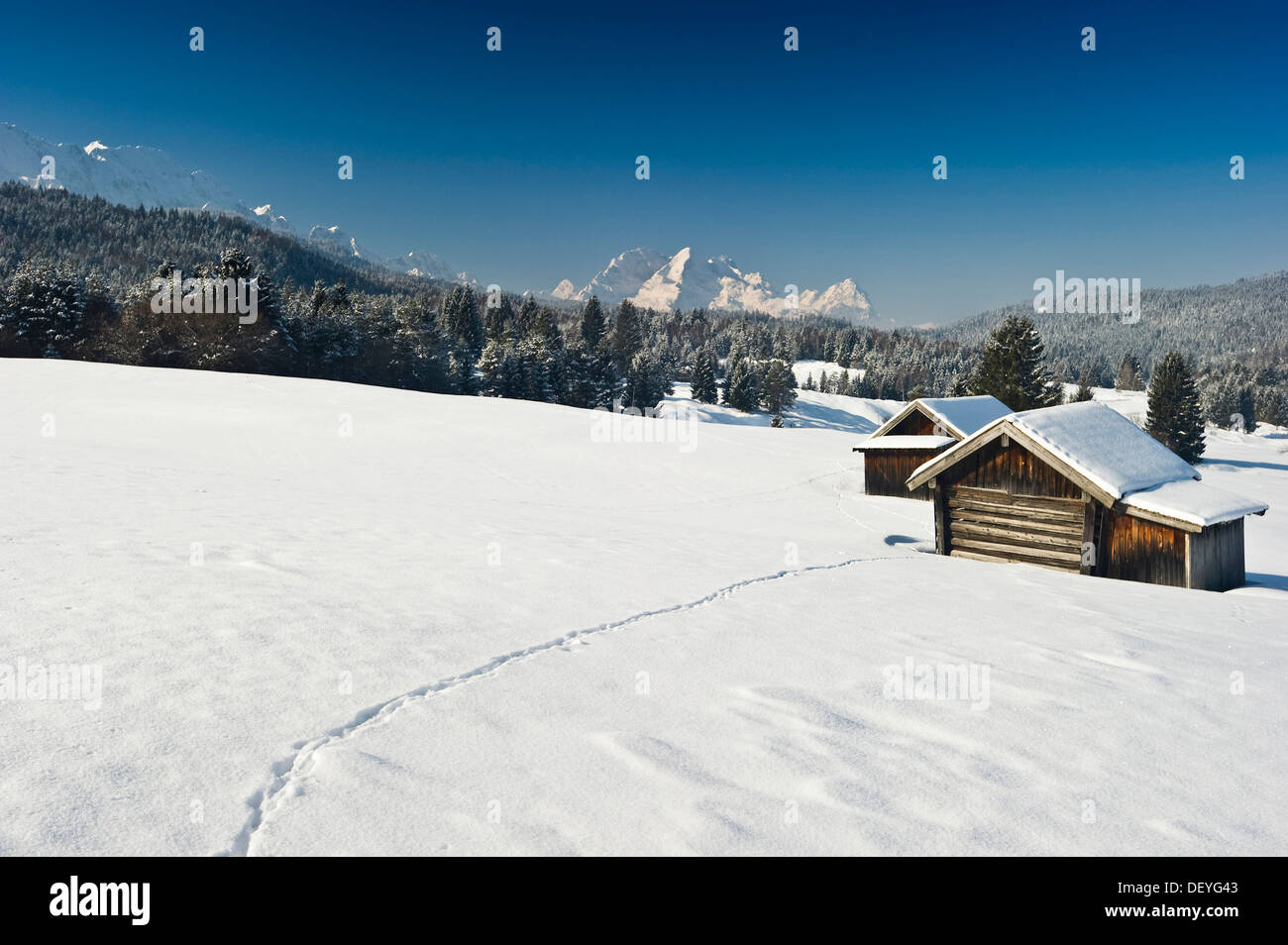Snow-covered pastures and hay barns, Zugspitze massif at back, Mittenwald, Upper Bavaria, Bavaria, Germany - Stock Image