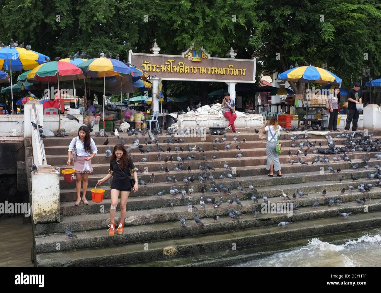 Thai Buddhists release fish into the river outside Wat Rakang temple, Bangkok - Stock Image