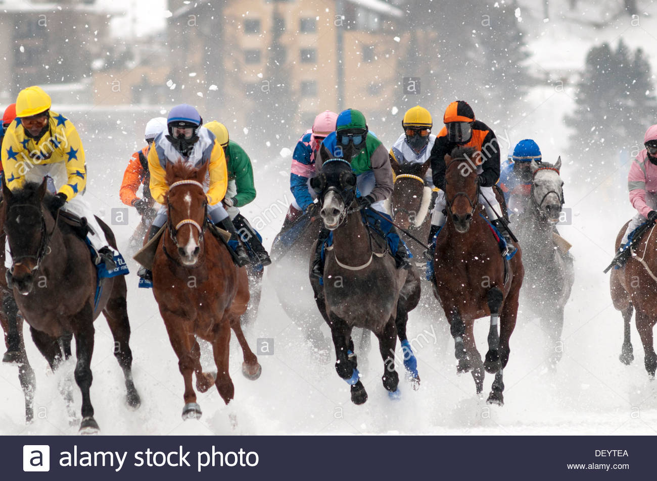 St. Moritz: horse racing, 'White Turf', frozen lake - Stock Image