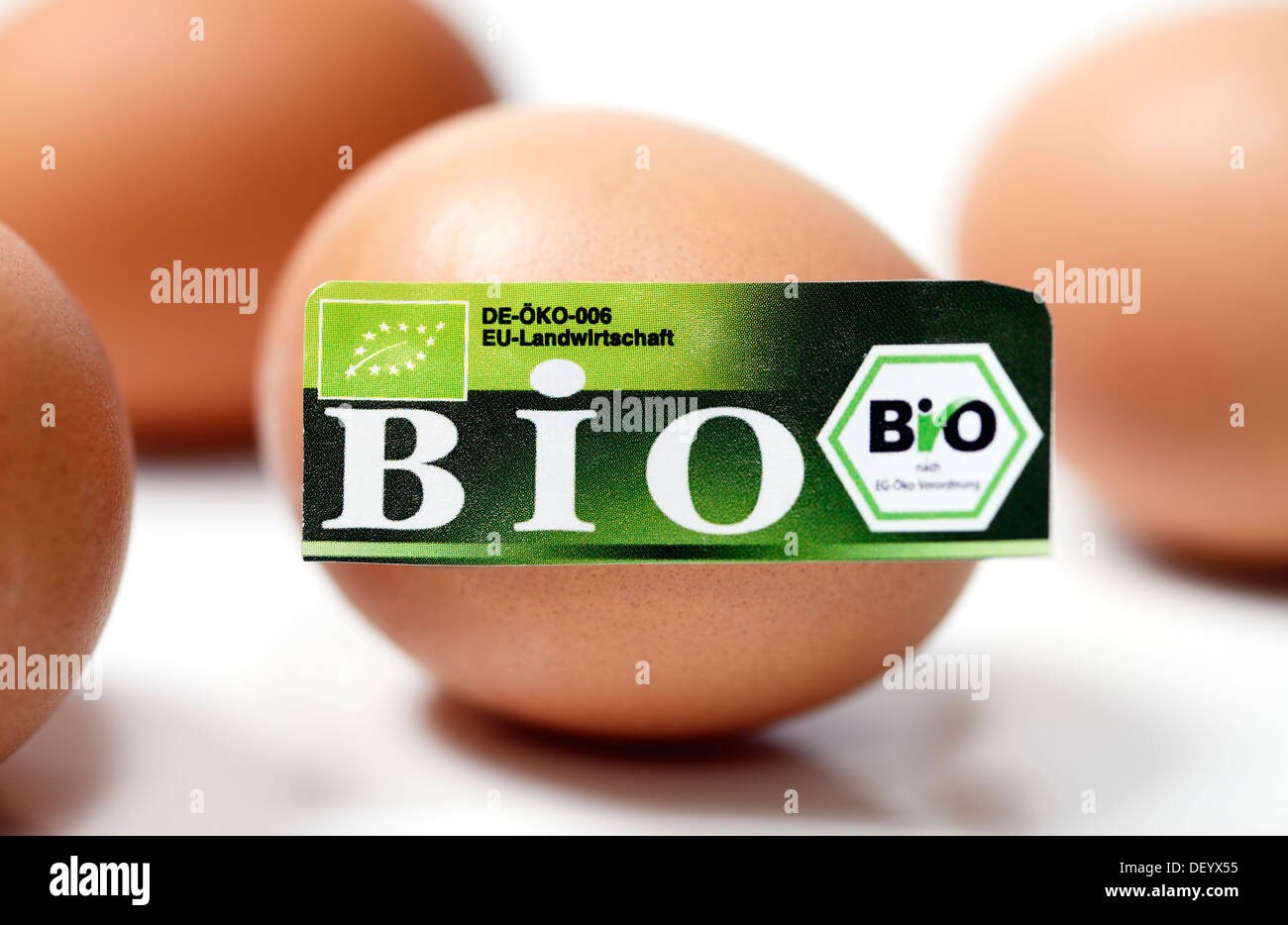 Hen's eggs with organic seal, symbolic image, Germany Stock Photo