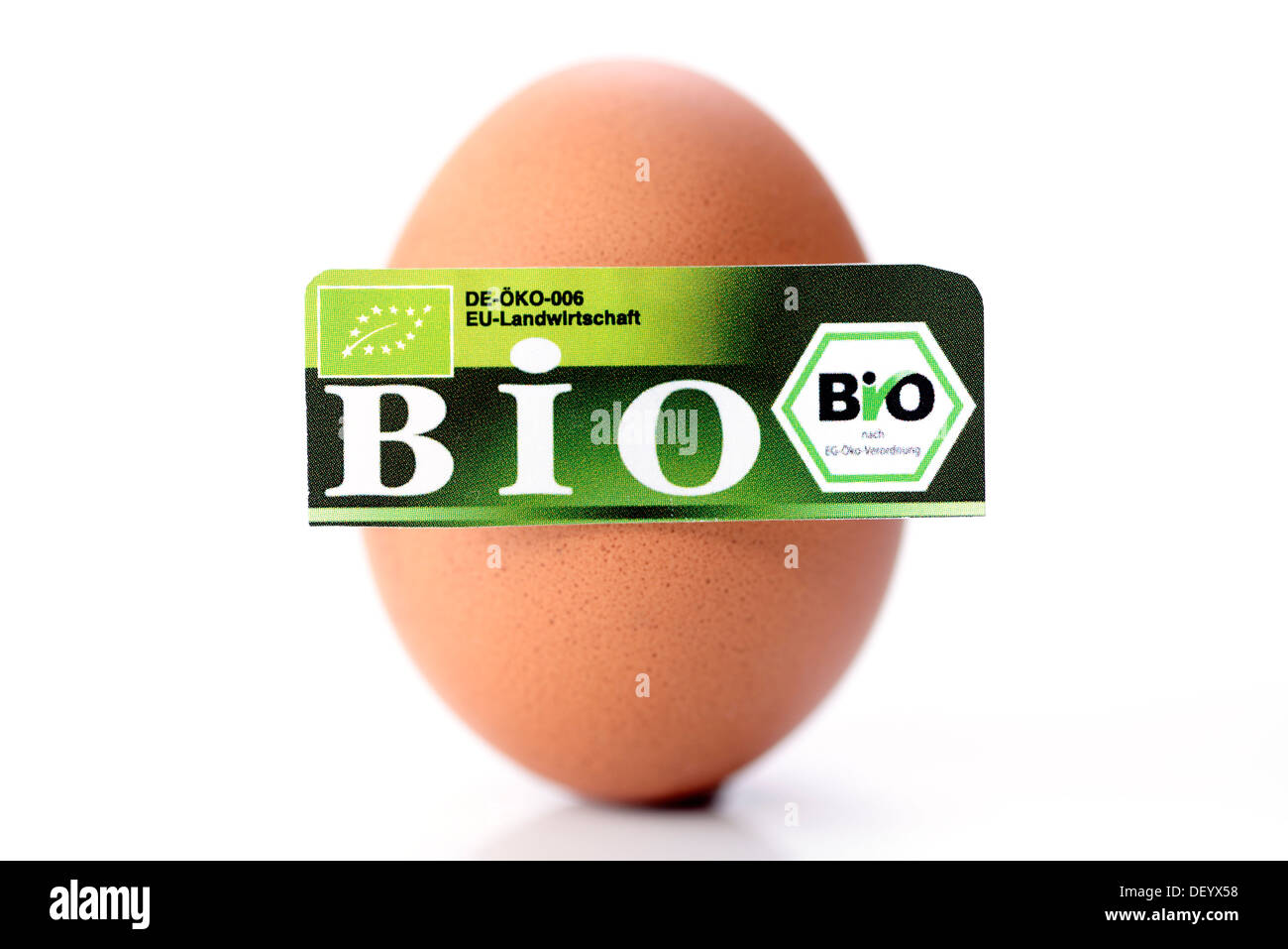 Hen's egg with organic seal, symbolic image, Germany Stock Photo