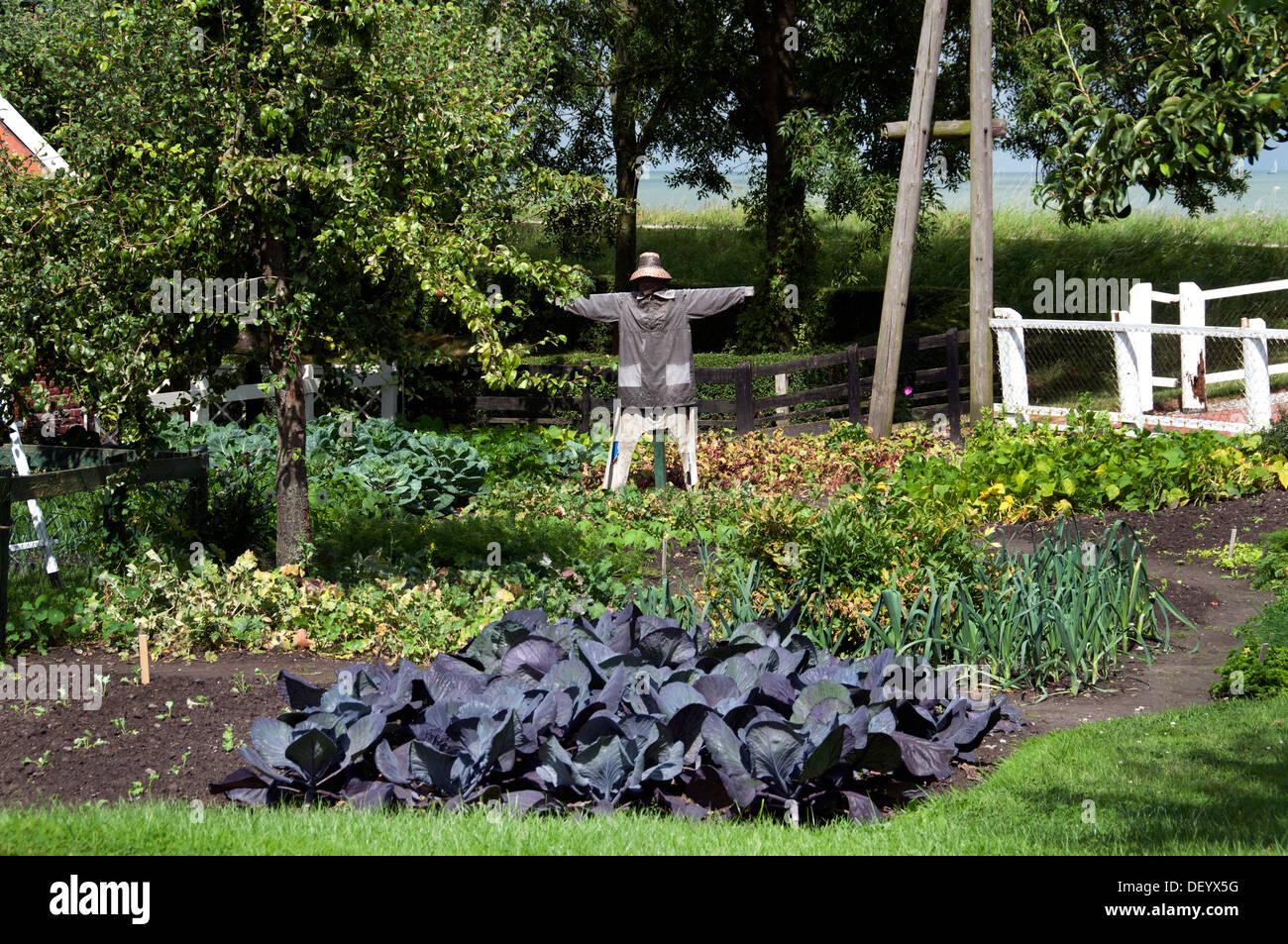 Scarecrow kitchen garden farm Enkhuizen Zuiderzeemuseum Netherlands - Stock Image