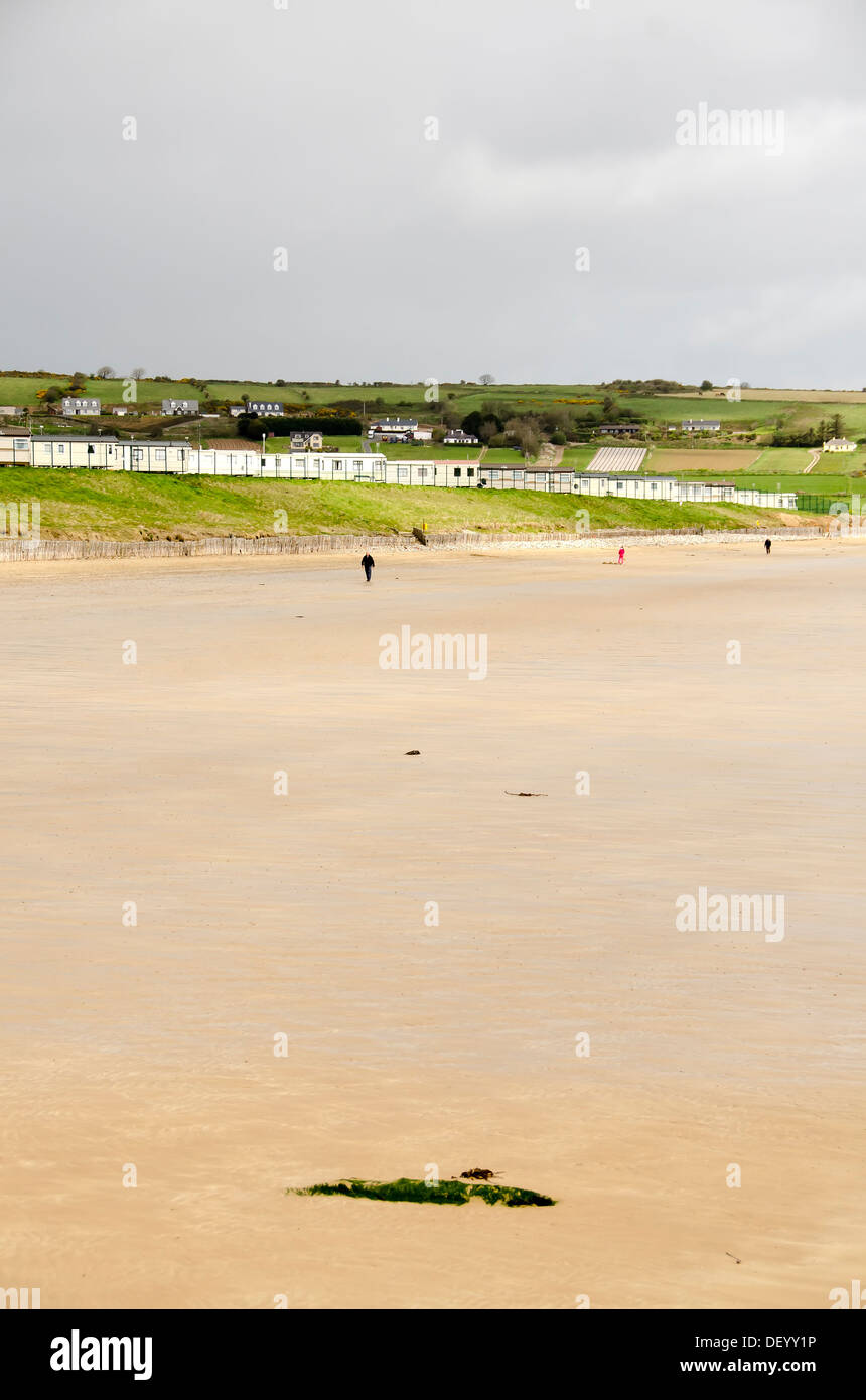 Low tide beach at Ardmore, a popular  seaside resort and fishing village in County Waterford, Ireland Stock Photo