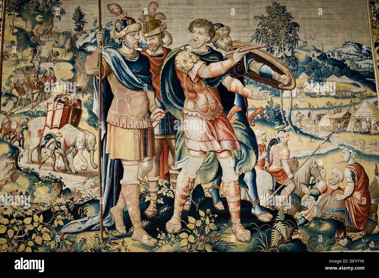 Anibal tapestry  Zamora cathedral  Castile-Leon  Spain - Stock Image