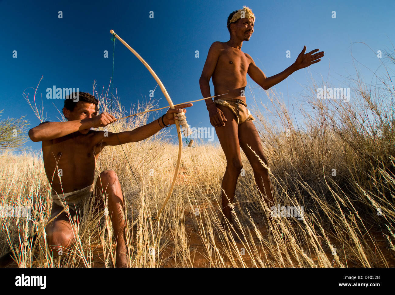 San, Bushmen, with a bow and arrow, near Andriesvale, Kalahari Desert, Northern Cape, South Africa, Africa - Stock Image