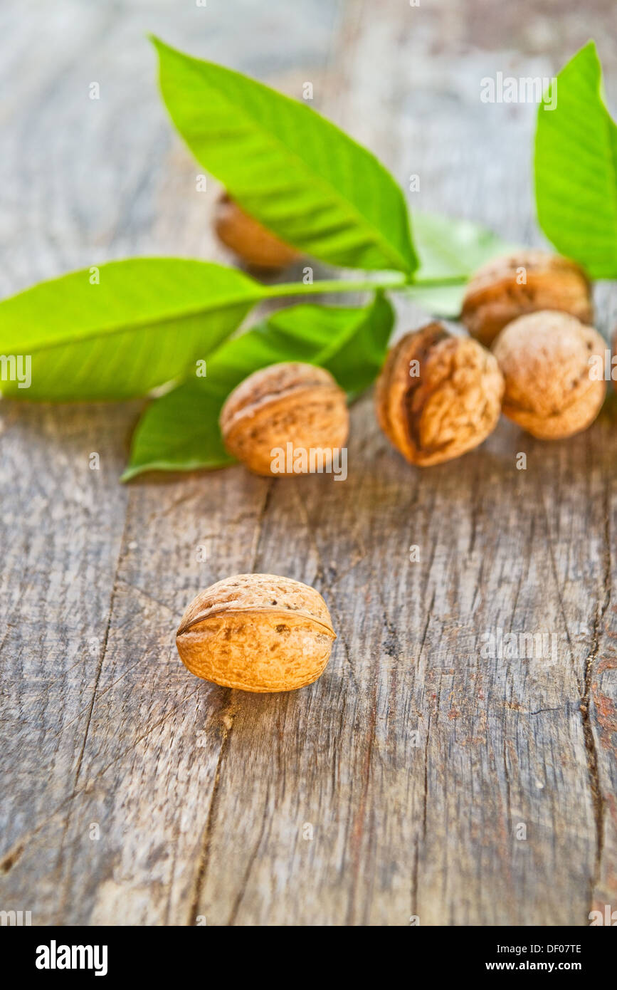 Walnuts on old wooden table, walnut leaf in background. Selective focus with shallow depth of field. Stock Photo