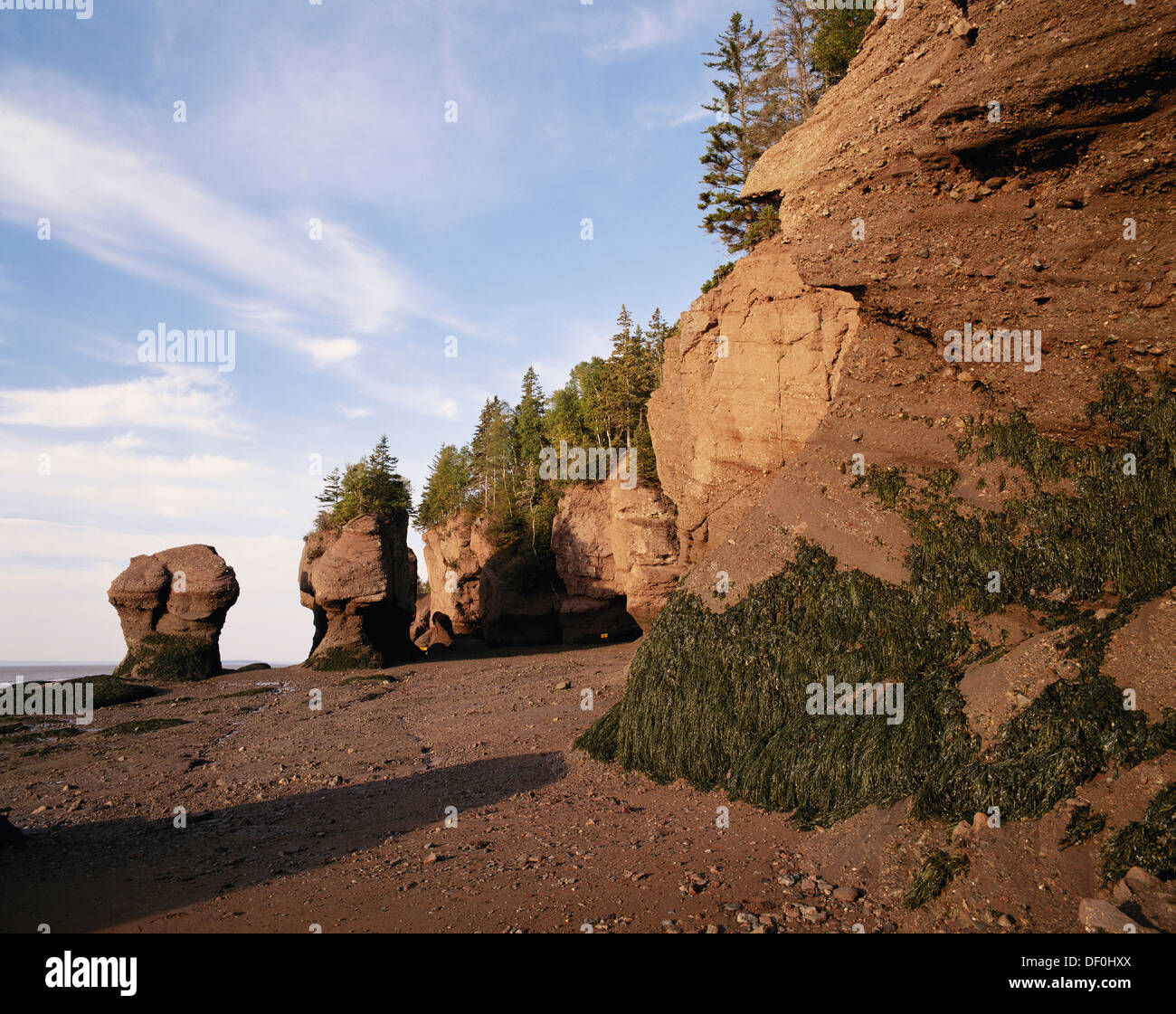 Canada, New Brunswick, Hopewell Cape, Flower Pot Rocks Stock ...