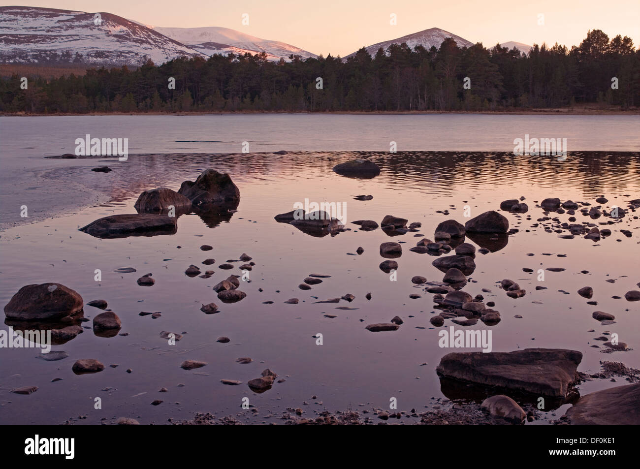 Calm winter evening, Loch Morlich near Aviemore, Glenmore Forest Park, Cairngorms National Park, Scottish Highlands, Stock Photo