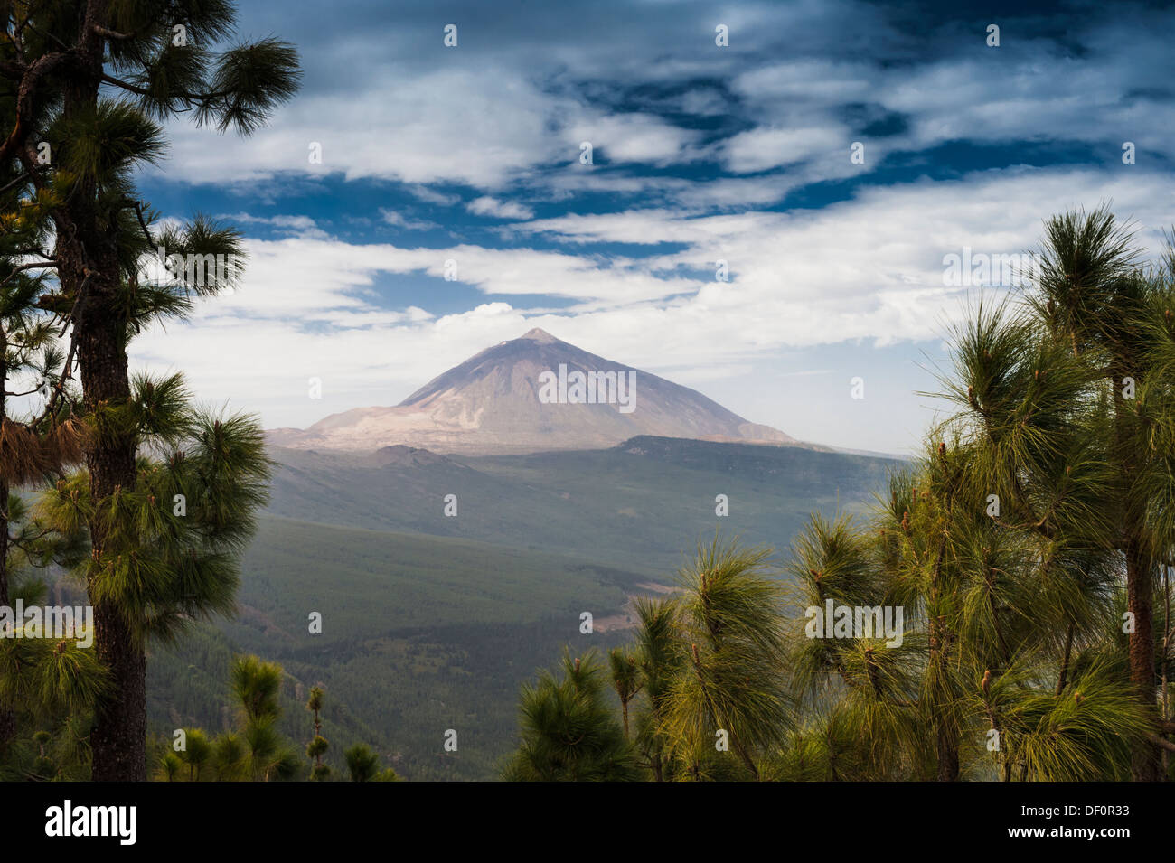 The huge stratovolcano of El Teide, across the Orotava Valley, from Mirador de Chipeque, Tenerife, - Stock Image