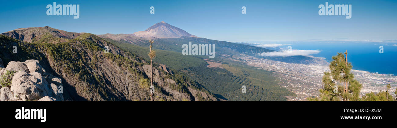 View towards the huge stratovolcano of El Teide, over the Orortava Valley from La Crucita, Tenerife, Canary Islands - Stock Image