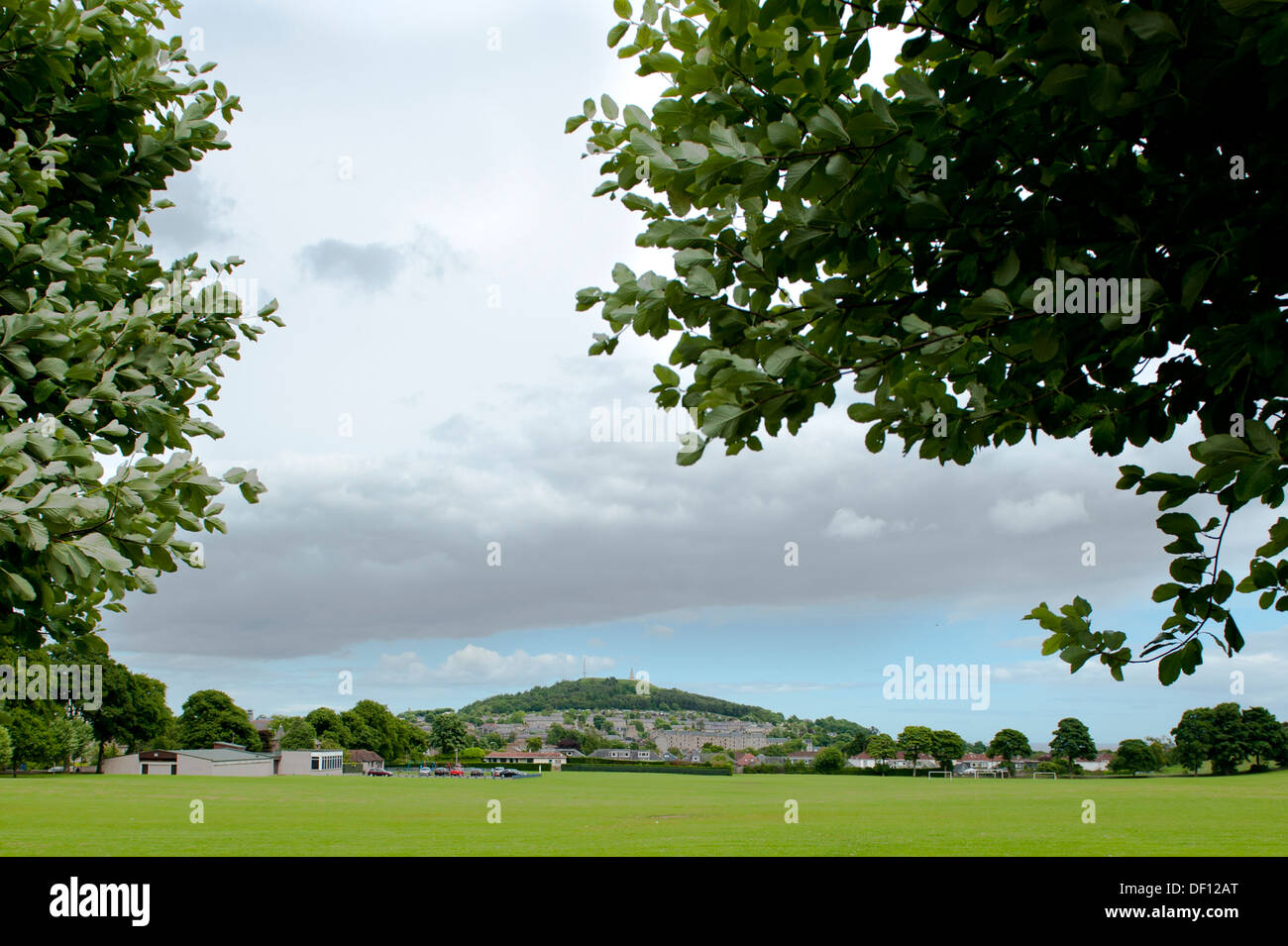 Law hill from Lochee park through trees - Stock Image