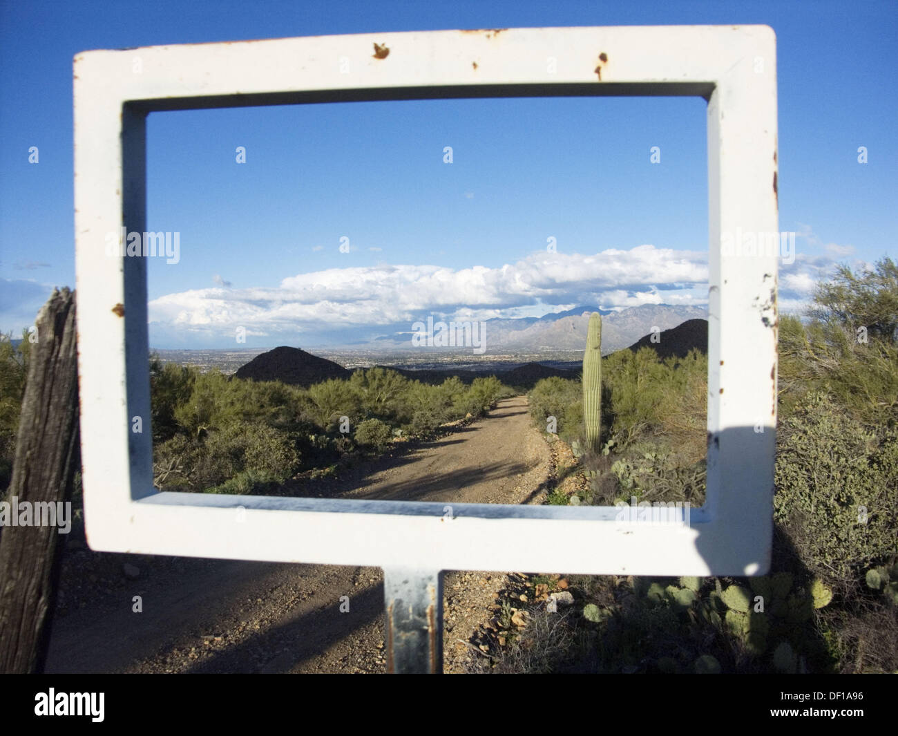 Arizona desert with Saguaro cactus through frame of old sign Stock ...