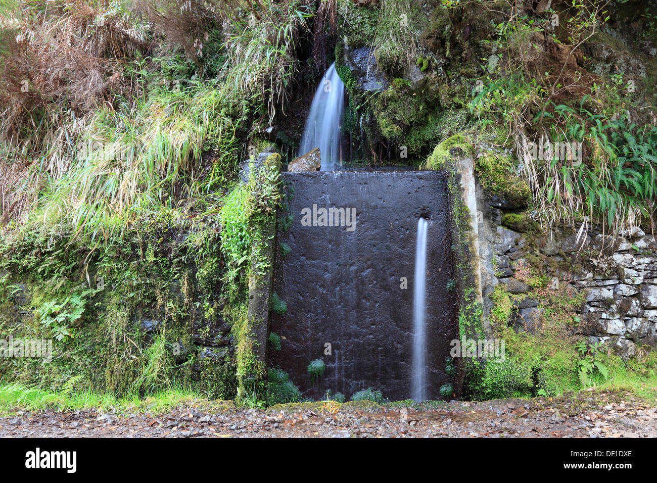 Madeira island, landscape, field trips Rabacal, the Levada do Risco to 25 Fontes, waterfalls, scenery along the Levada hiking tr - Stock Image