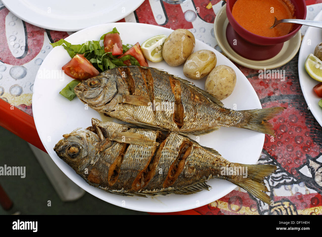 Mobile Kitchen Islands Typical Fish Dishes Black Bream With 180 Papas Arrugadas