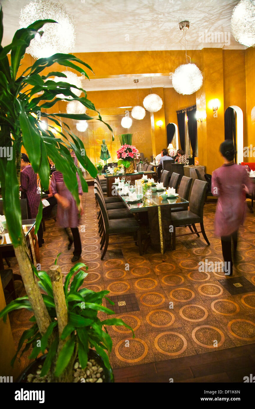 Lotus Flower Restaurant Gallery - Flower Wallpaper HD