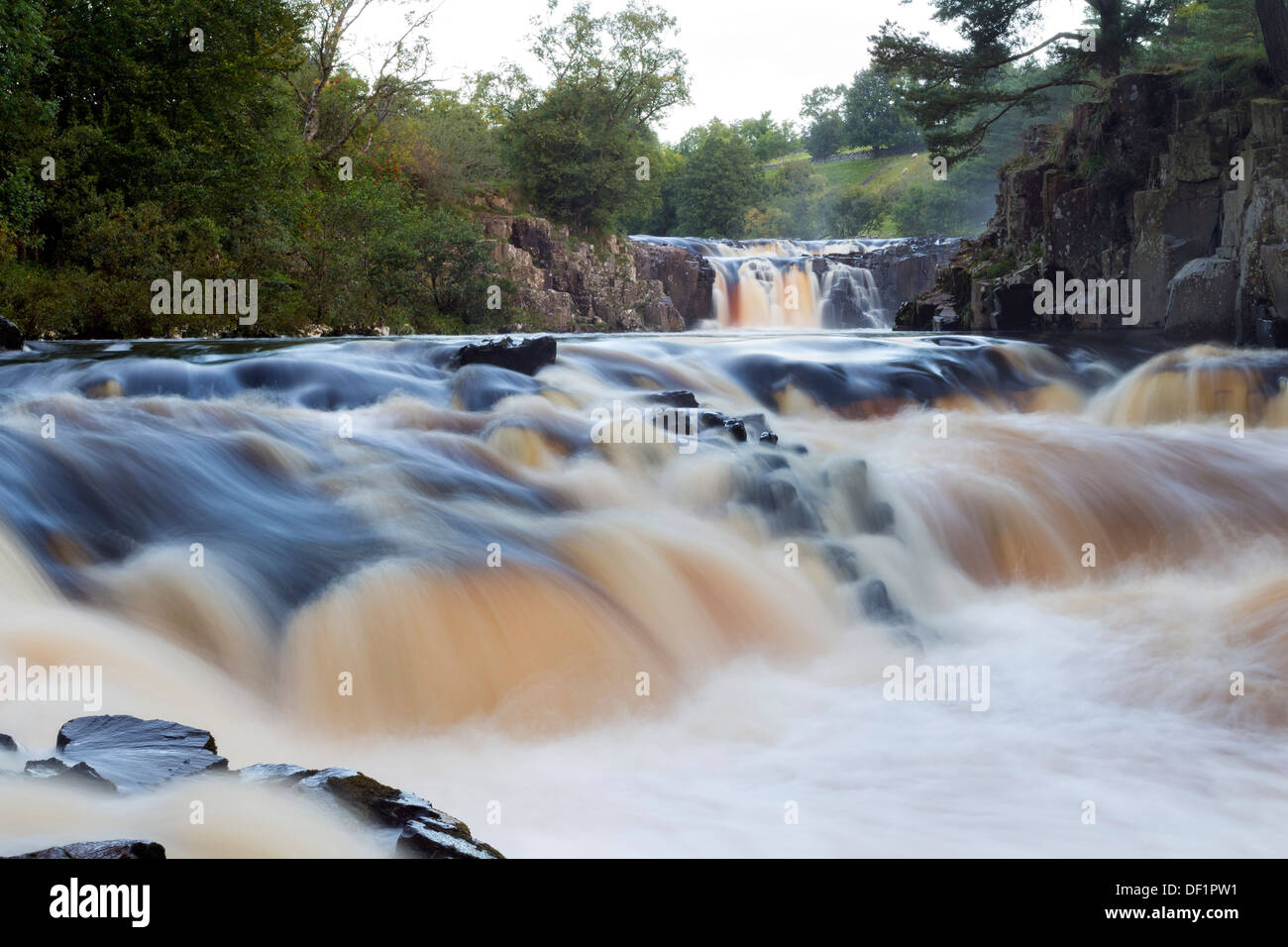 The River Tees at Low Force Bowlees Upper Teesdale County Durham UK - Stock Image