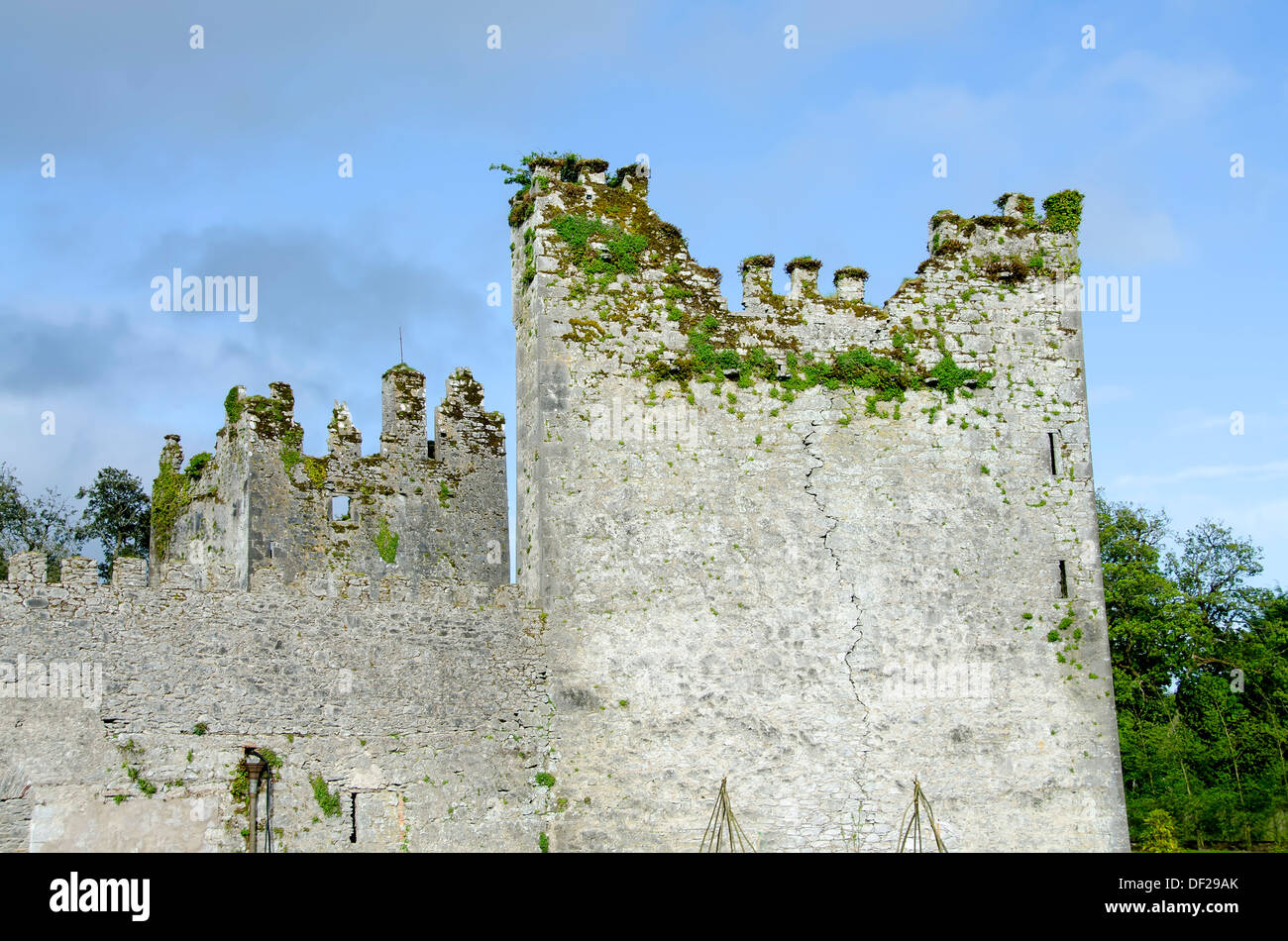 Tower and chimneys at the 800 year-old castle attributed to the Knights Templar at Castlemartyr resort, County Cork, Ireland. - Stock Image