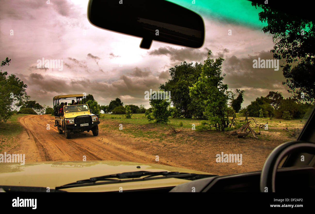 Visit to Chobe National Park, Botswana Stock Photo