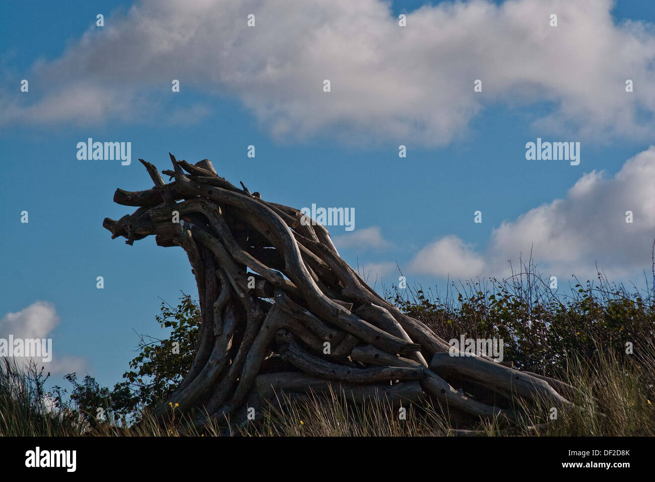 Twisted timbers, - Stock Image