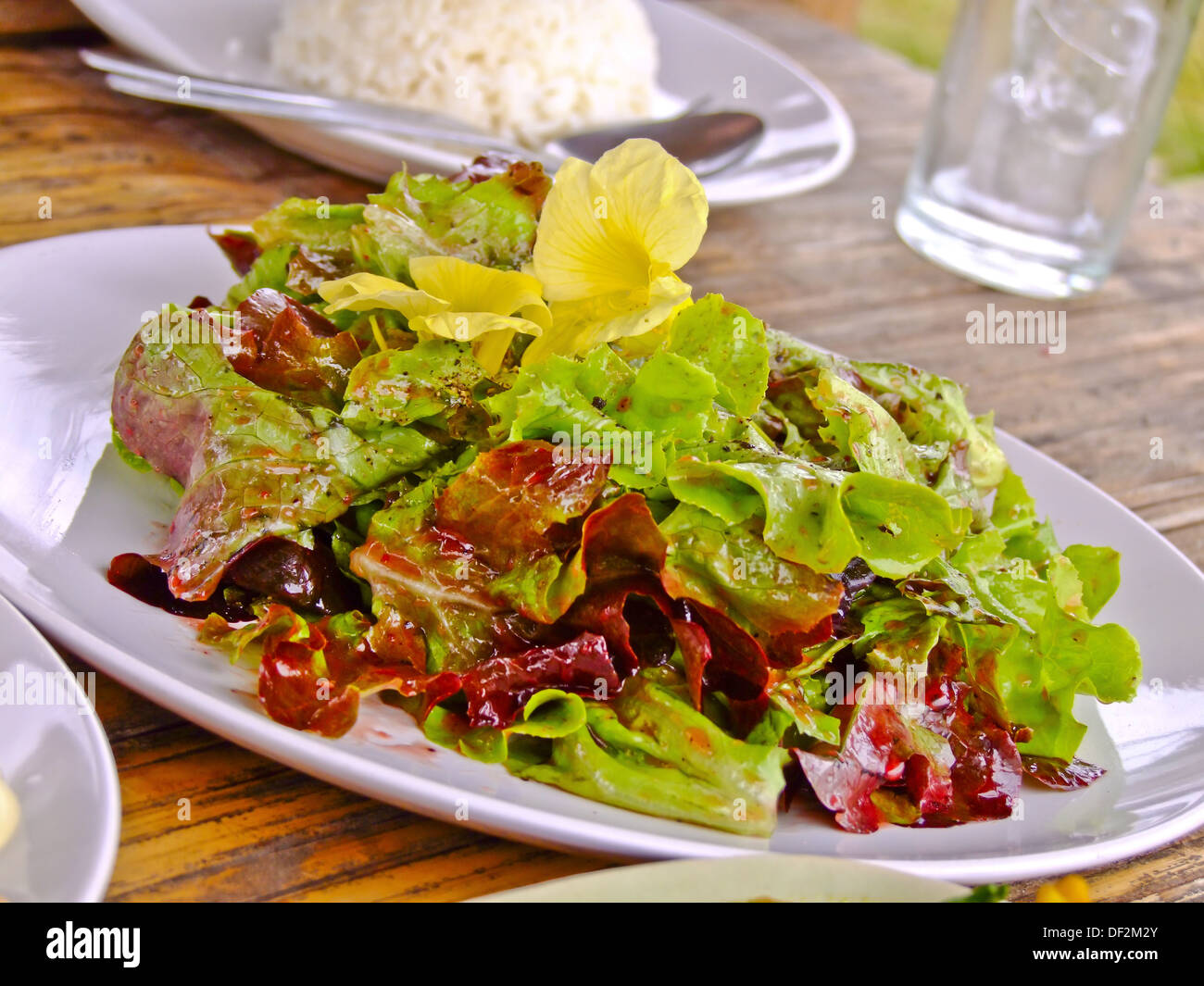 mixed salad in style of thai northen hilltribe - Stock Image