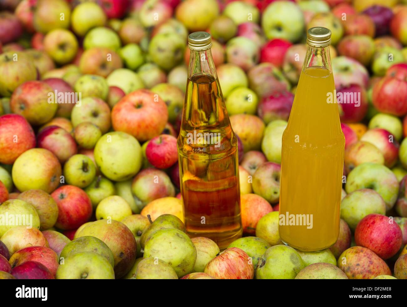 difference between cider and juice - HD1200×900