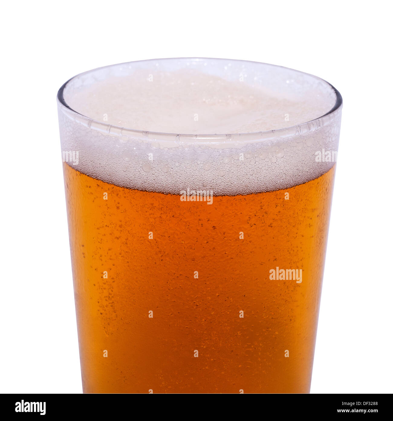 A pint of lager on a white background - Stock Image