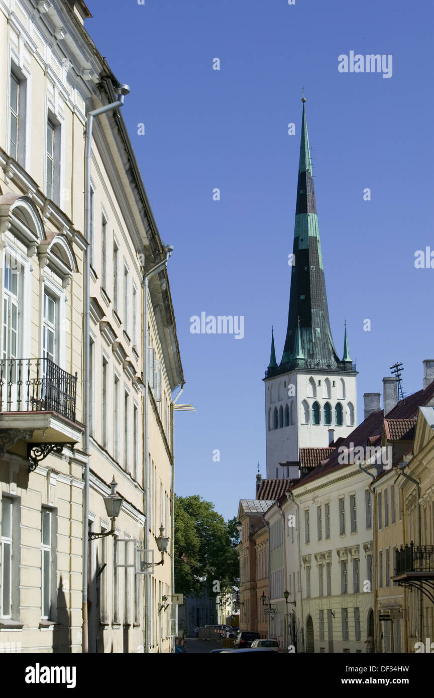 Houses and St Olaf Church in Old Town. Tallinn. Estonia - Stock Image