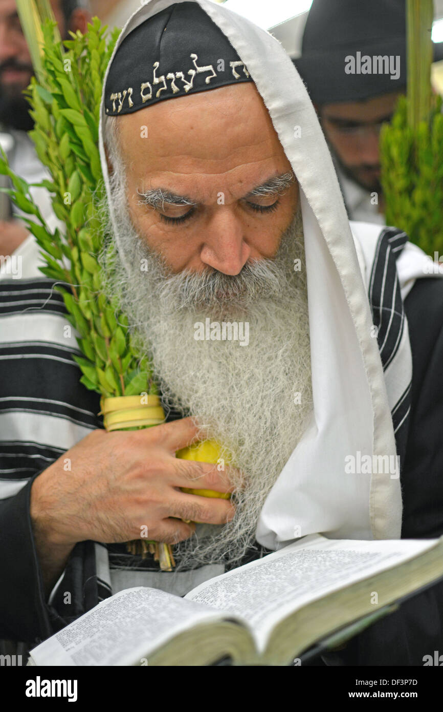 A religious Jewish man with a beard holding an esrog and lulav at morning prayer services in Crown Heights, Brooklyn, New York - Stock Image