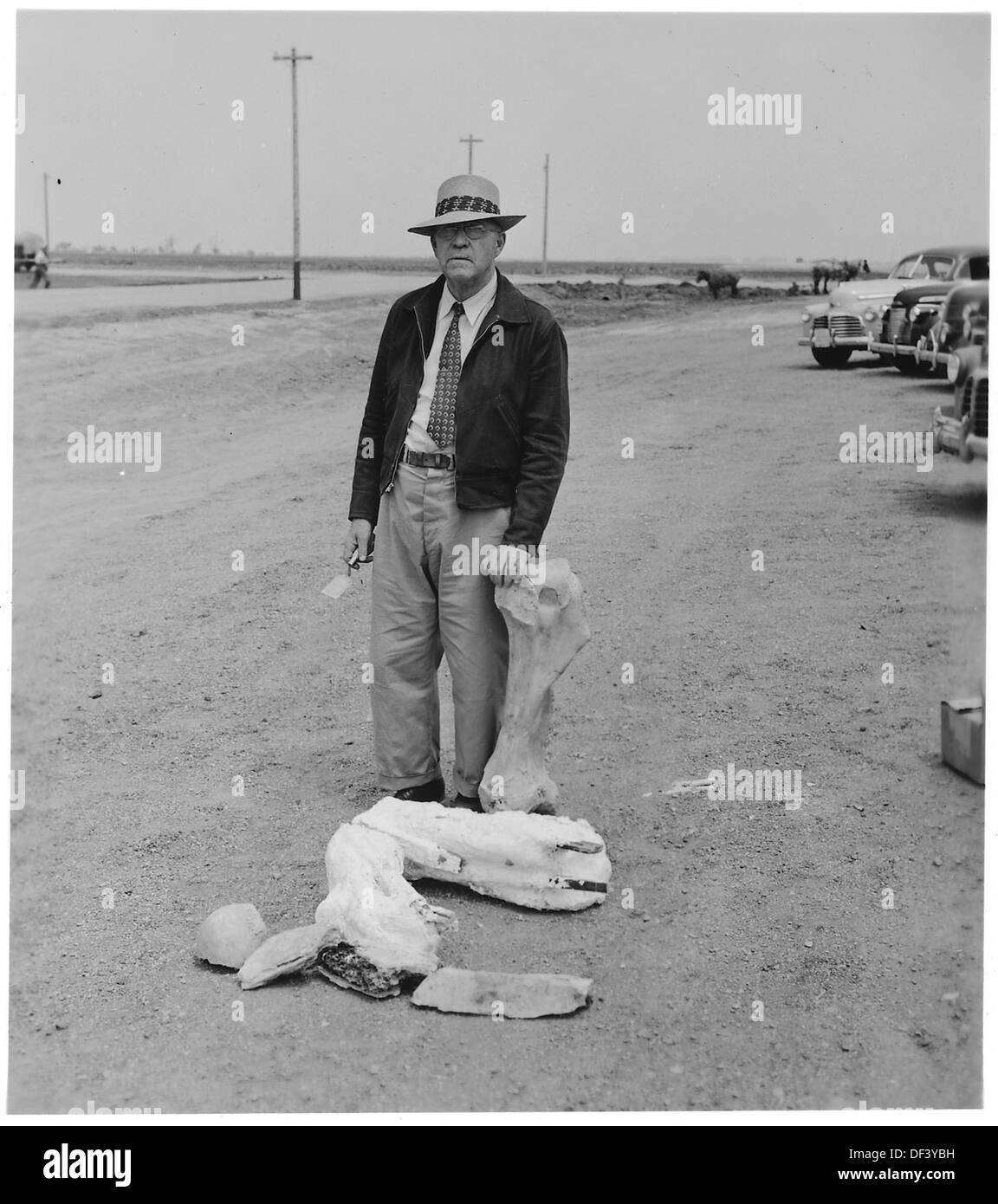 Dinosaur bones in parking lot. Cornhusker Ordnance Plant, Nebraska. 292133 - Stock Image