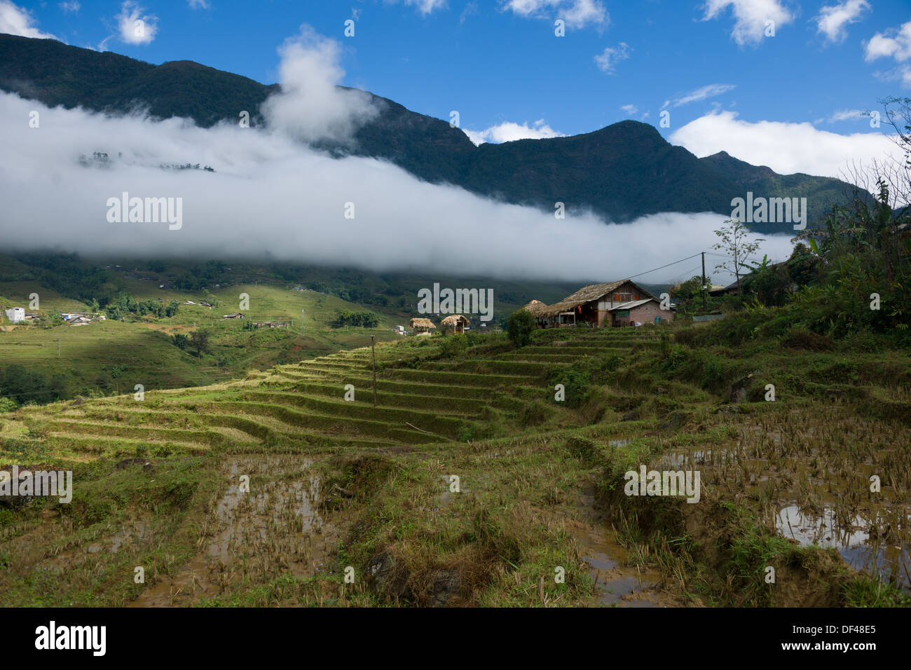 Low-lying cloud in a valley above rice terraces, Ta Van village, near SaPa, Vietnam - Stock Image