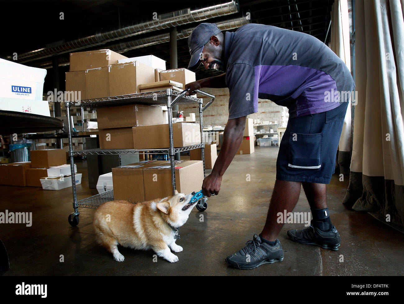 Sept. 18, 2013 - Memphis, Tenn, U.S. - September 18, 2013 - FedEx delivery driver Robert Johnson (right) plays with Stock Photo