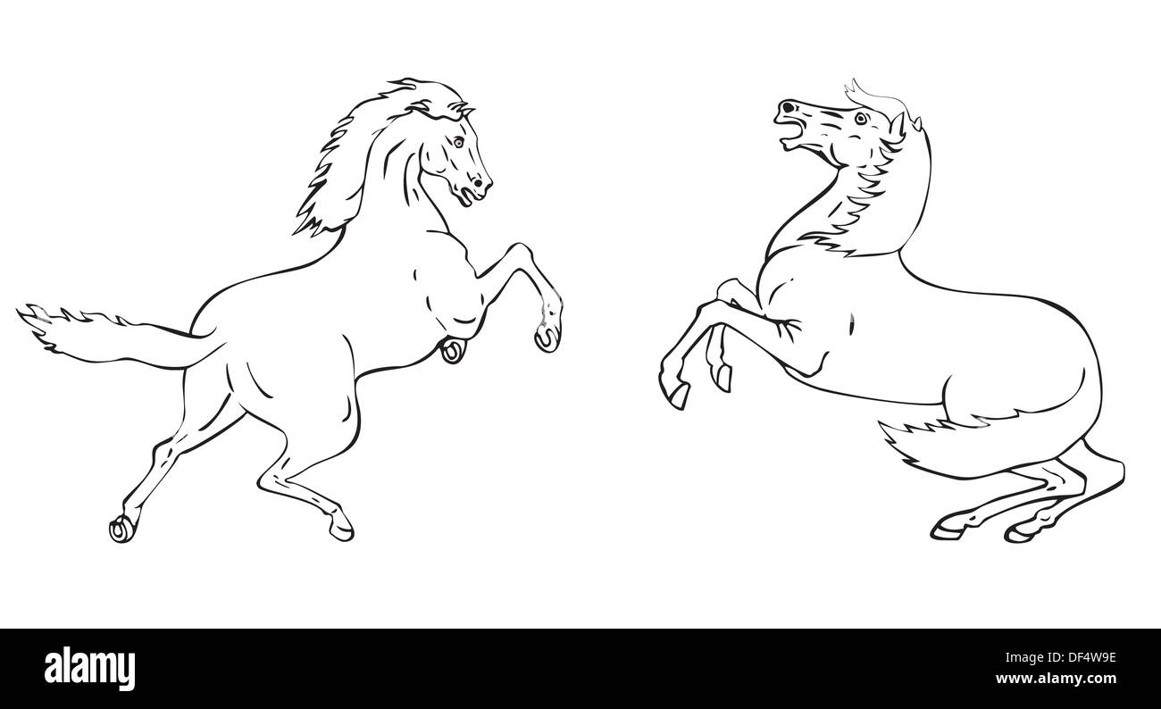 Illustration Line Drawing Of A Jumping Horse In Two Positions Stock Photo Alamy