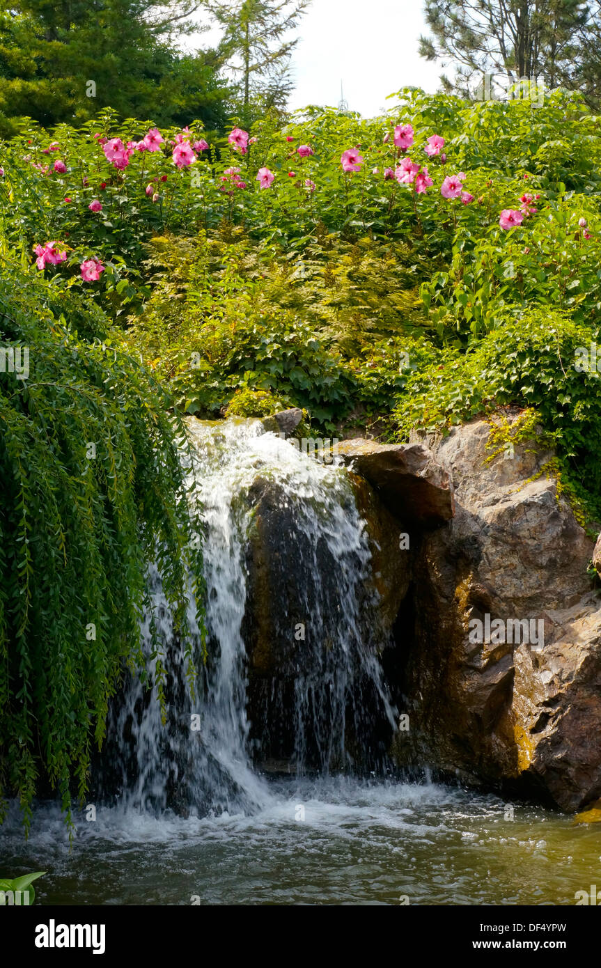 Bon Waterfall At The Chicago Botanic Garden In Glencoe, Illinois