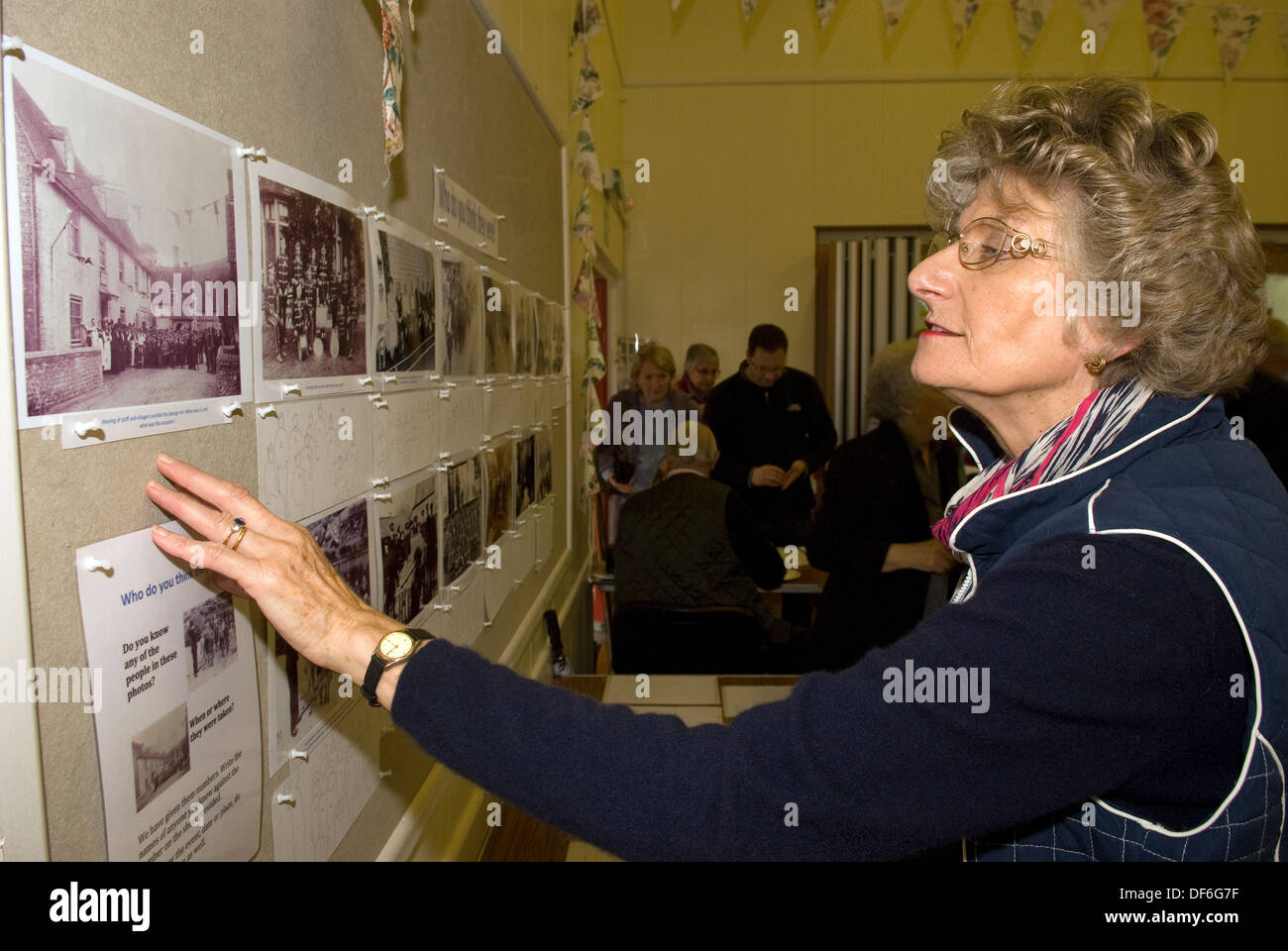 Elderly woman browsing old photographs at a village history open day, East Meon, near Petersfield, Hampshire, UK. - Stock Image