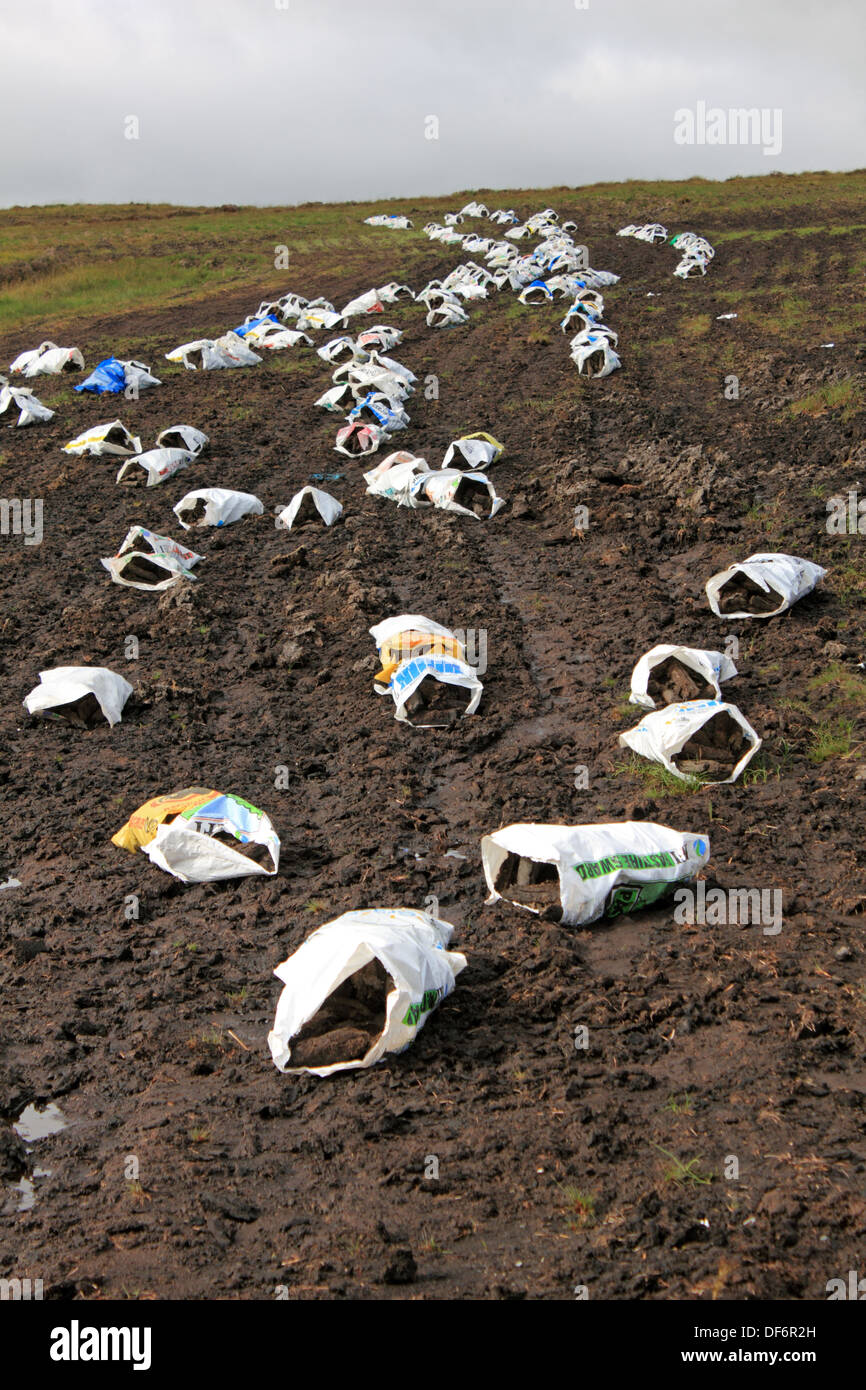 Bags of turf (peat blocks for burning) drying in the fields along the R250 west of Letterkenny, County Donegal, Eire. - Stock Image